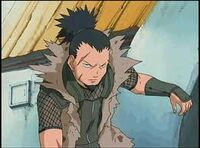 Shikamaru's Dad