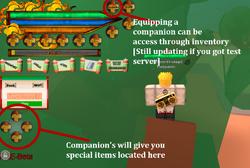 Companionbreakdown