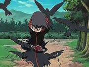 Crow gen