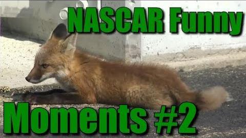NASCAR Funny Moments 2