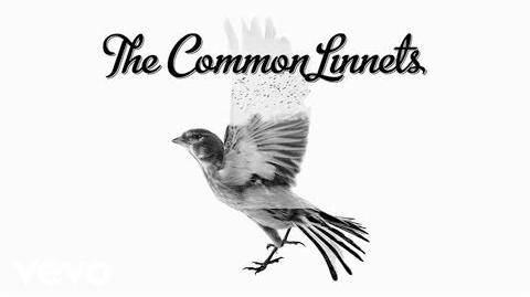 The Common Linnets - Love Goes On (audio only)