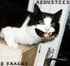 Acoustics 3 Tracks
