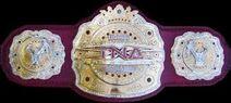 Tna legends championship