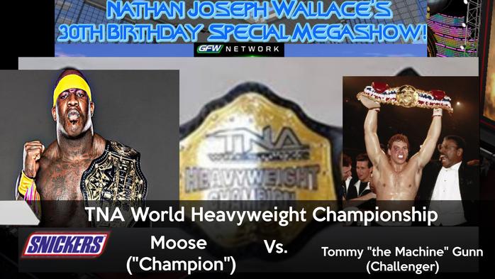 -Nate30 TNA World Heavyweight Championship v2