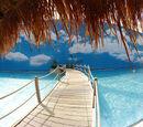 Adoha Beach House