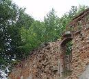 Oceana Wall