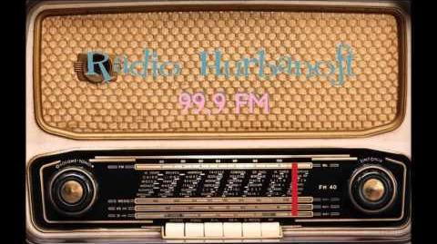 Radio Hurbanoft 2