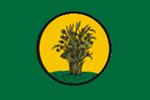 Nongye flag