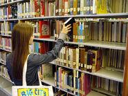 Mithrandirs bookshelves