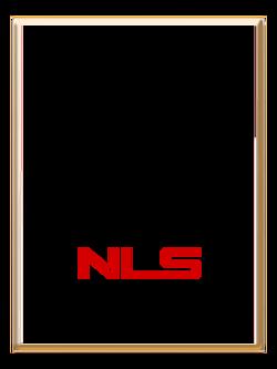 NLS party program