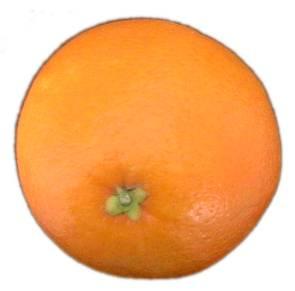 File:Naranja.jpg