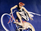 Atlantic Cycle Co.