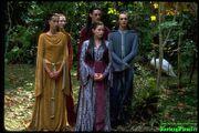 Elves arwen