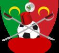 Soccer Flag