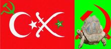 Oodlish Flag