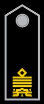 Comandante Generale MVSN bis