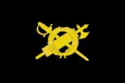 Bandiera Scuola ufficiali MVSN