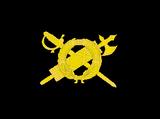 M.V.S.N. (Italian Social Republic)