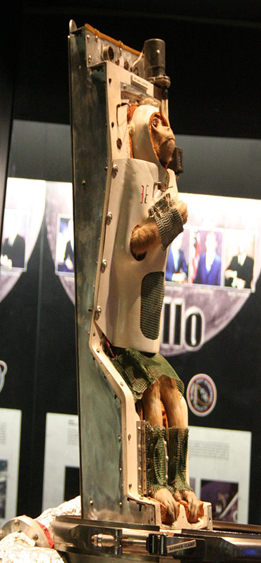 Able the space monkey in real life at the actual Air and Space Museum.