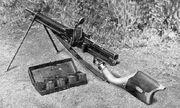 Type 11 1