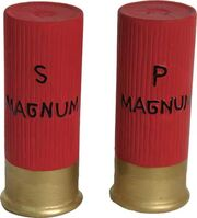 Shotgun-shell-picture