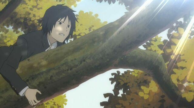 File:Tanuma crawling at tree.jpg
