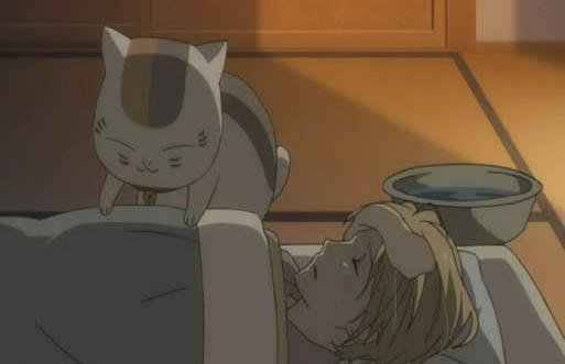 File:Nyanko-sensei-bedding.jpg
