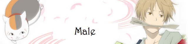 File:Maletop.png