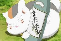Nyanko-sensei-sake
