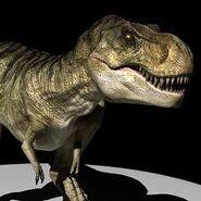 Rex228