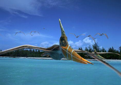 NG-Pteranodon.jpg