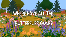Where Have All The Butterflies Gone title card