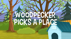 WoodPecker Picks A Place title card