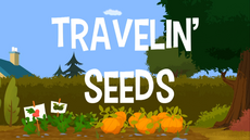 Travelin Seeds title card