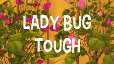 Lady Bug Tough title card
