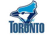 Nature of Toronto Logo 1