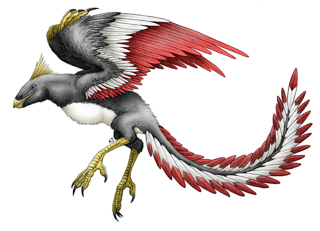 File:Archeopteryx for Rikudrak by Uzag.png
