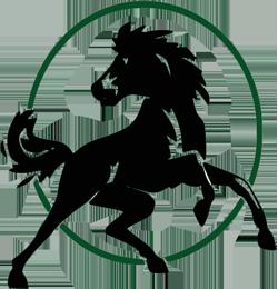 Cal Poly Pomona Broncos | Basketball Wiki | FANDOM powered