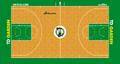 Boston Celtics court logo.png