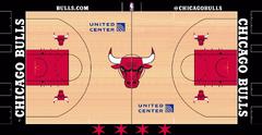 Chicago Bulls court logo