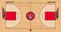 Toronto Raptors court logo.png