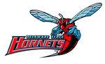 Delaware-State-Hornets
