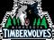 MinnesotaTimberwolvesLogo