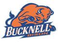 Bucknell Bison.jpg