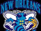 New Orleans Hornets (2013)