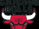 Chicago Bulls (2013)