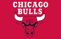 Chicago Bulls - Flag