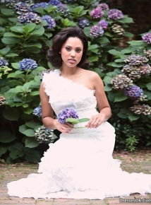 Image stephen curry girlfriend ayesha alexander wedding dress 8 stephen curry girlfriend ayesha alexander wedding dress 8g junglespirit Images