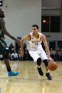 Seth-Curry-santacruzbasketball