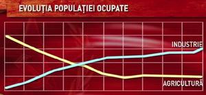 Evolutia populatiei ocupate